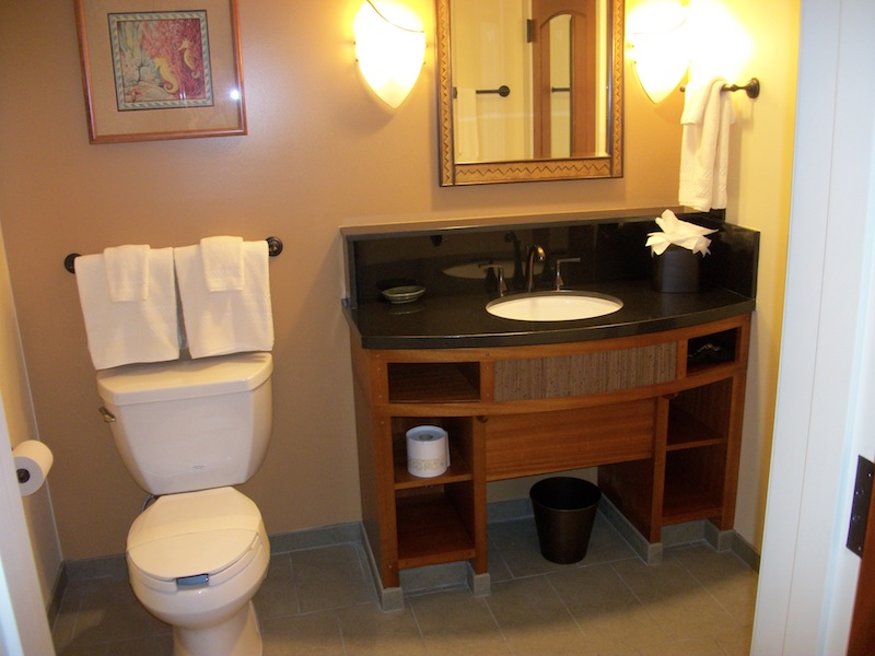 Master bathroom vanity and toilet