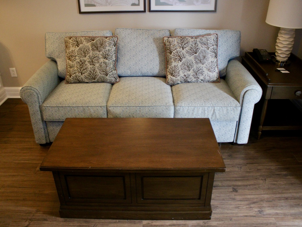 Living room queen size sofa bed and coffee table (storage)