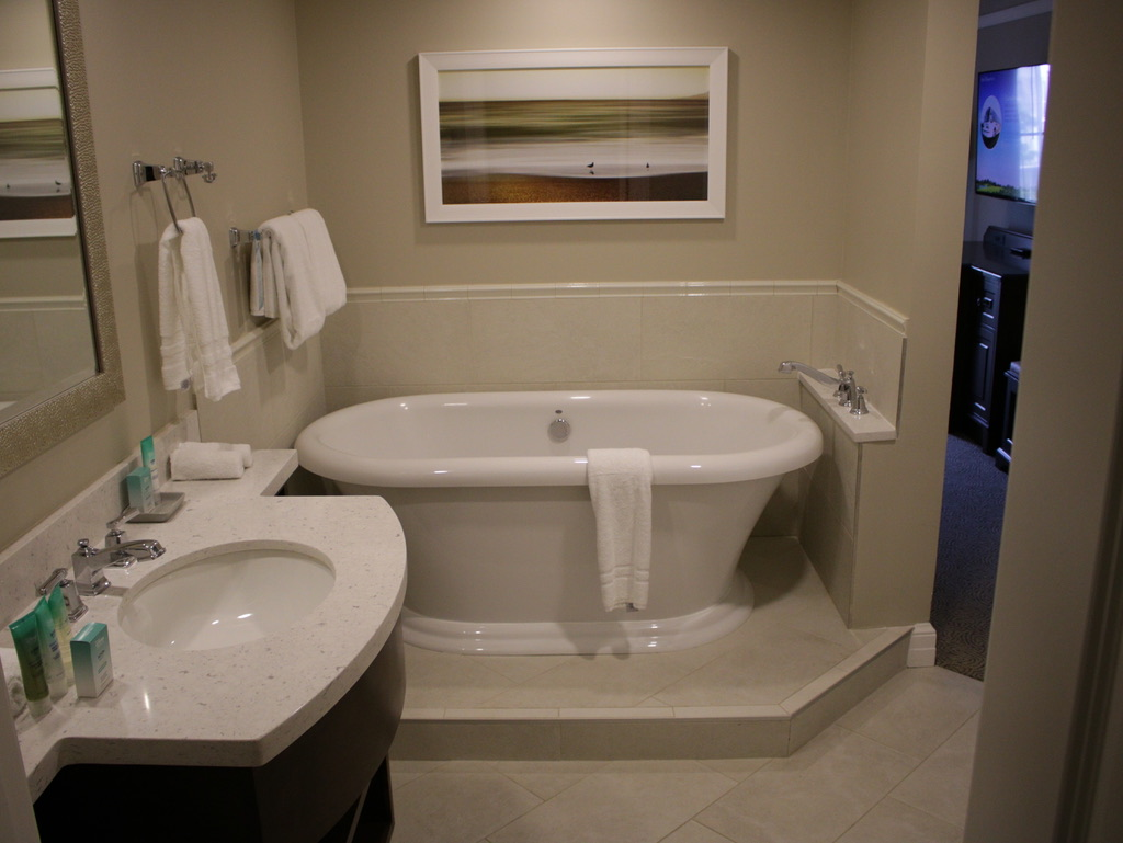 Master bath vanity and tub