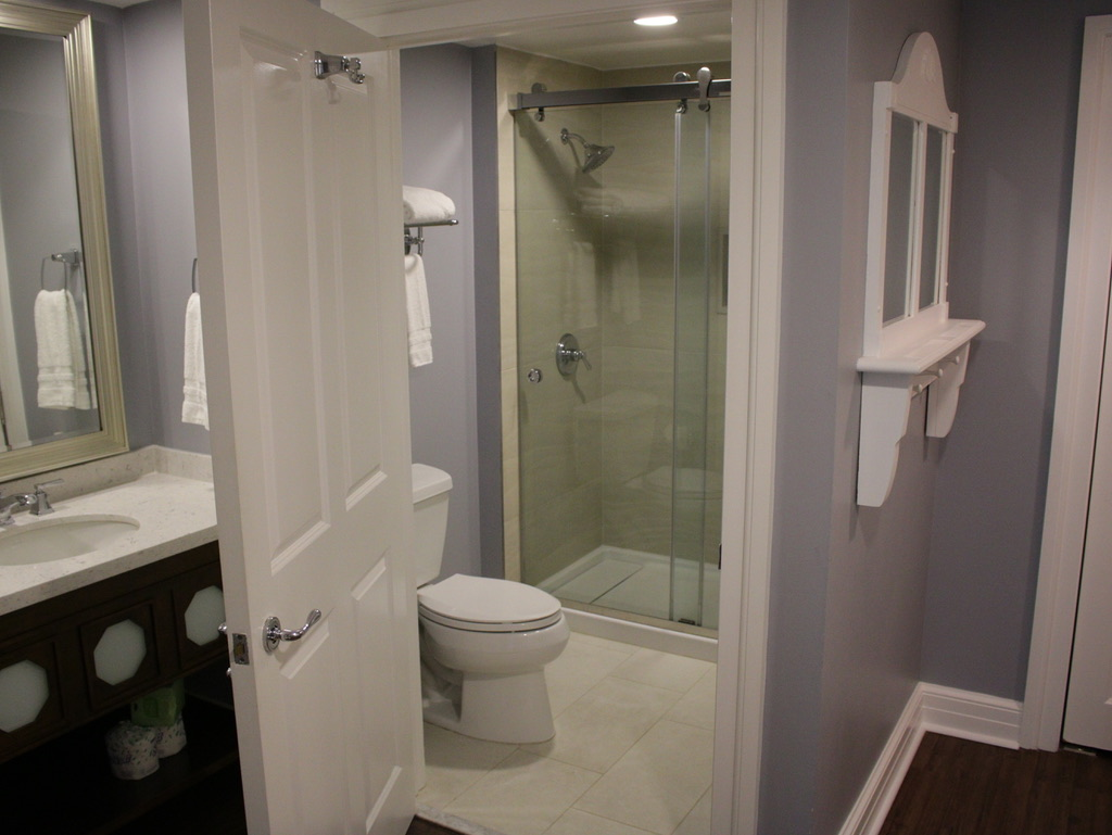 Shower and commode