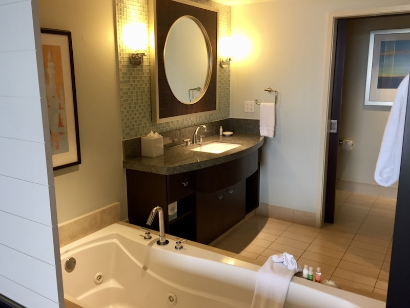 Master bathroom tub and vanity