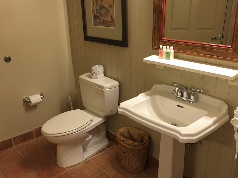 Master bathroom sink and toilet