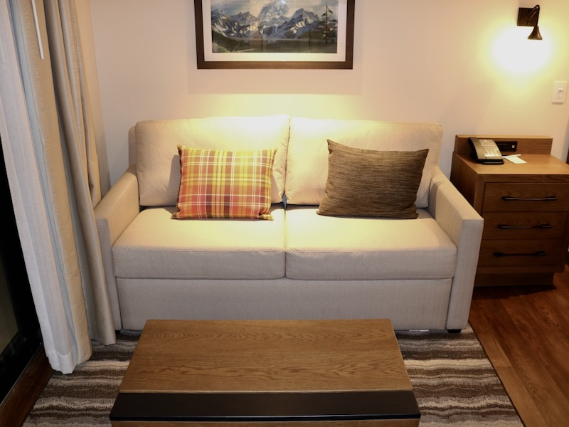 Full size sofa bed and coffee table